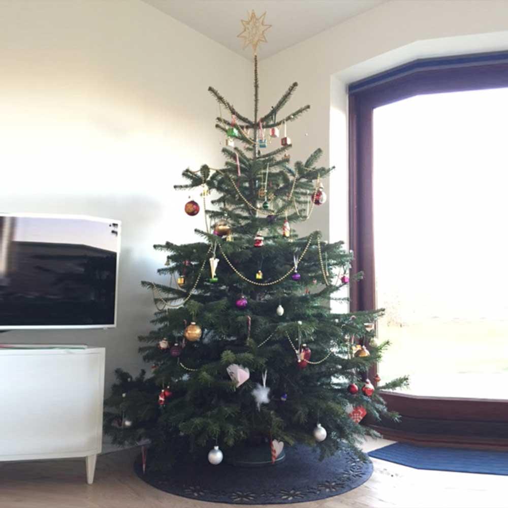 juletræ ballerup