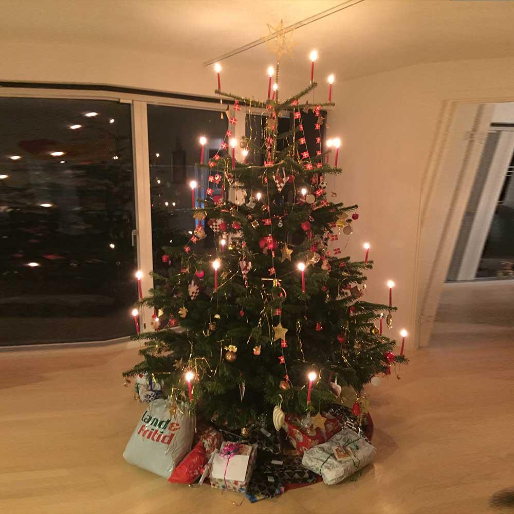 hvor kan man købe juletræer