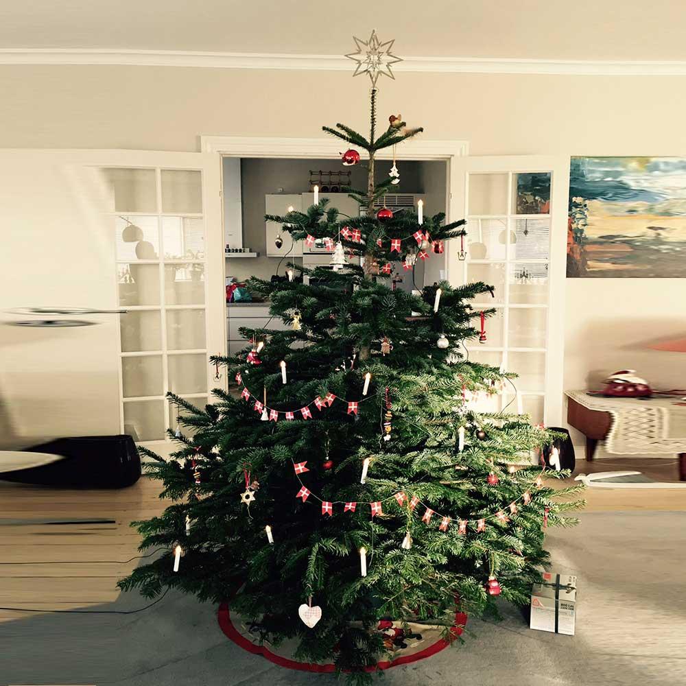 juletræer kastrup